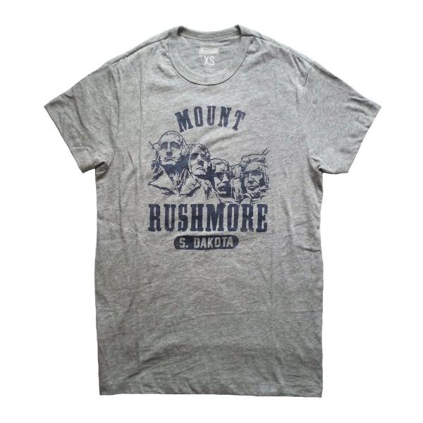 画像1: TAILGATE テイルゲート Tシャツ MOUNT RUSHMORE  グレー メンズ (1)
